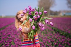 Woman with long red hair wearing a striped dress holding a bouquet of purple tulips flowers on background on purple tulip fields stock photos