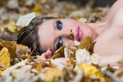 Beautiful young woman lying autumn leaves Stock Image