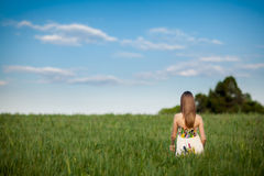 Beautiful young woman in meadow Stock Photography