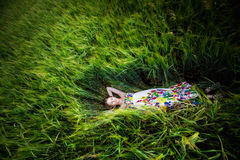 Beautiful young woman in meadow Stock Images