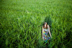 Beautiful young woman in meadow Royalty Free Stock Photo