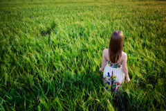 Beautiful young woman in meadow Royalty Free Stock Photos