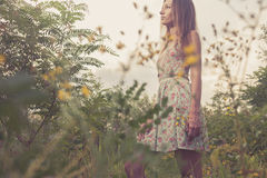 Beautiful Young Woman in Meadow of Flowers. Royalty Free Stock Photo