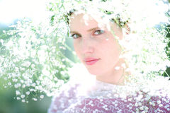 Beautiful young woman on the meadow with white flowers on a warm Stock Images