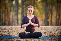 Beautiful young woman meditates in yoga asana Padmasana - Lotus pose on the wooden deck in the autumn park. Beautiful young woman meditates in yoga asana royalty free stock image