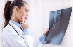 Beautiful young woman orthopedist examine X-rays Royalty Free Stock Image