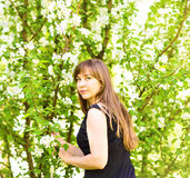 Beautiful young woman over white blossom tree, outdoors spring portrait.  Royalty Free Stock Photo