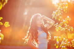 Beautiful young woman in a park in spring last rays of the sun Stock Photography