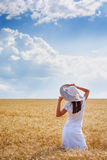 Beautiful young woman on perfect wheat field Stock Images