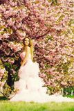 Glamour girl in pink blossom stock photo