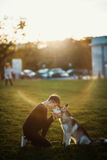 Beautiful young woman playing with funny husky dog outdoors in park at sunset  or sunrise. Beautiful young woman playing with funny husky dog Stock Images