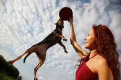 Funny jumping dog. Beautiful young woman playing with her dog in park.Dog is jumping for her Frisbee Stock Photo