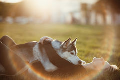 Beautiful Young Woman Playing With Funny Husky Dog Outdoors In Park At Sunset Or Sunrise Stock Photo