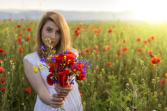 Beautiful young woman in poppy field holding a bouquet of poppie Royalty Free Stock Images