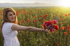Beautiful young woman in poppy field holding a bouquet of poppie Royalty Free Stock Photography