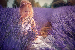 Beautiful young woman posing in a lavender field Royalty Free Stock Images
