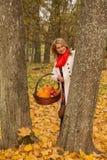 Beautiful young woman posing with pumpkin, apples Stock Photos