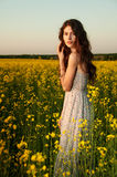 Beautiful young woman posing in the rapeseed field Stock Images