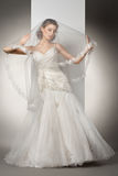 The beautiful young woman in a wedding dress Royalty Free Stock Images