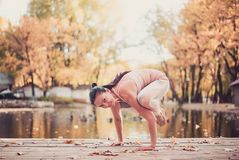 Beautiful young woman practices yoga asana on the wooden desk in the autumn park. royalty free stock images