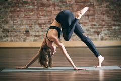 Beautiful young woman practices yoga asana at the yoga studio on a brick wall background. Beautiful young fit woman practices yoga asana at the yoga studio on a stock image
