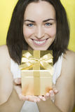 Beautiful young woman presents a gift Stock Photography
