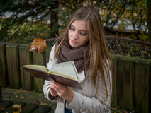 Beautiful young woman reading book in the park Royalty Free Stock Image