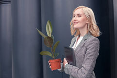 Beautiful young woman is ready to work. Cheerful businesswoman is standing and smiling. She is holding a plant and a laptop. The blond lady is looking forward Royalty Free Stock Image
