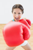 Beautiful young woman in red boxing gloves at fitness studio Stock Photography