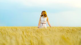 Beautiful young woman with red hair walking on wheat field on sunny summer day. With blue sky on background. Enjoying peacefulness and nature. Calmness, harvest stock video
