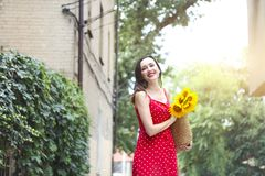 Beautiful young woman in red polka dots dress holding basket with sunflowers. Close up royalty free stock photo