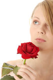 Beautiful young woman with red rose. Isolated Royalty Free Stock Image