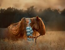 Beautiful  young woman with red tinker horse in rue field