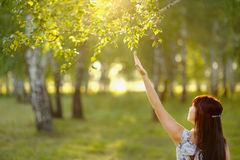 Beautiful young woman with regard to branches of the trees. Royalty Free Stock Images