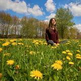 Beautiful young woman relaxing on a meadow with many dandelions in the spring sun. Low angle shot with the blue sky. Stock Photography