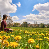 Beautiful young woman relaxing on a meadow with many dandelions on a sunny day. Low Angle - square. Royalty Free Stock Photo