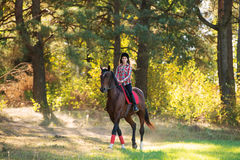 Beautiful young woman rides on a horse outdoor Royalty Free Stock Images