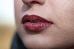 Beautiful young woman's mouth with perfect lips Royalty Free Stock Image