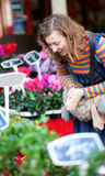 Beautiful young woman selecting flowers. At market Royalty Free Stock Images