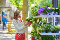 Beautiful young woman selecting flowers at market Stock Images