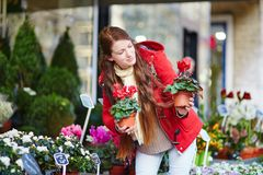 Beautiful young woman selecting flowers market Stock Photography