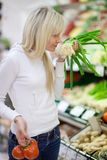 Beautiful young woman shopping Stock Photography