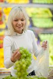 Beautiful young woman shopping Stock Photography
