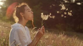 Beautiful young woman blows dandelion in a wheat field in the summer sunset. Beauty and summer concept stock footage
