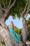 Beautiful young woman sitting on a tree trunk Royalty Free Stock Photography