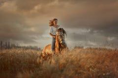 Beautiful  young woman on spanish buckskin horse in rue field