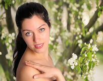 Beautiful young woman with spring flower background. Beautiful brunette woman over white apple blossom flower background Stock Photography