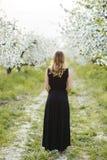 Beautiful young woman in spring garden backview Royalty Free Stock Photos