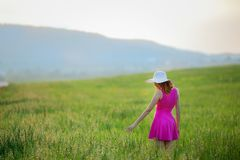 Beautiful young woman standing back countryside, rustick nature place in green field with blue sky copy space.  royalty free stock photo