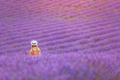 Young pretty woman in long orange dress wearing hat watching sunset in a lavender field. Beautiful idyllic landscape stock images